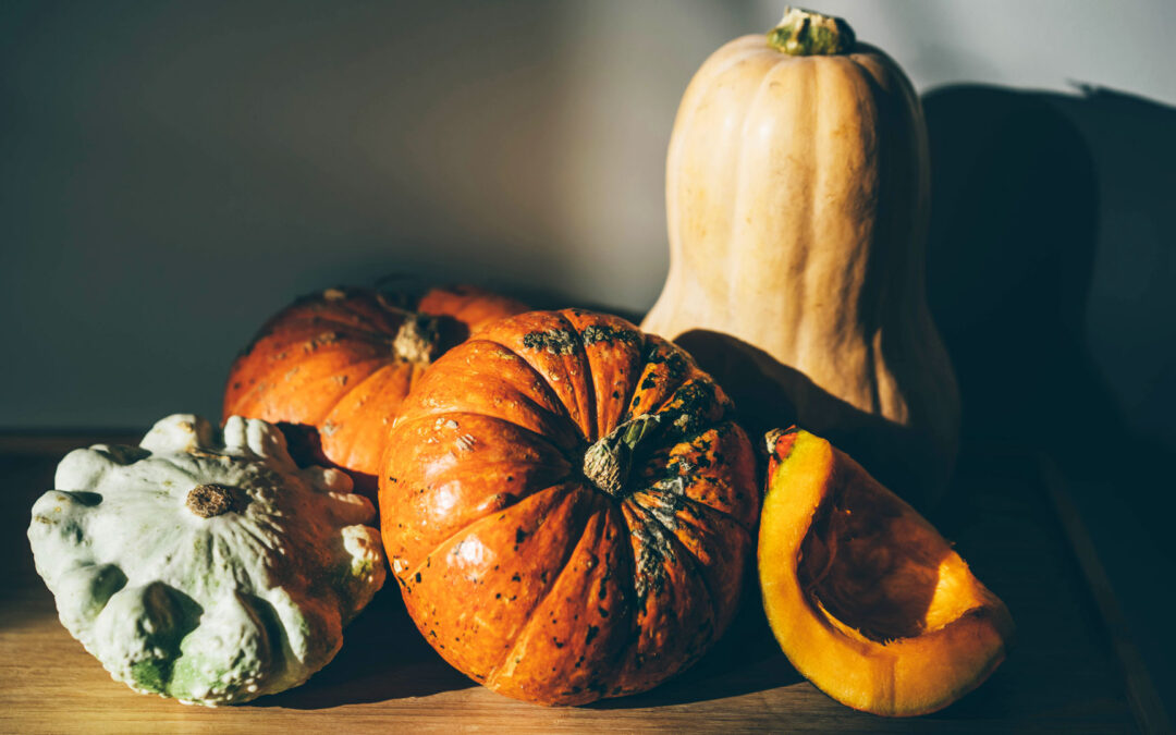 Pumpkins And Pests: How To Protect Your Gourds From Scary Bugs