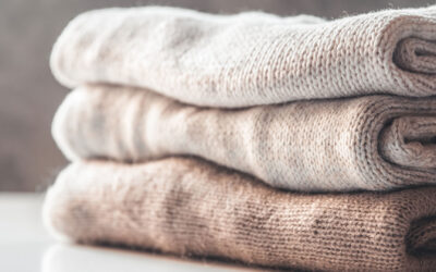How to Save Your Clothes, Rugs, and Carpets from Moths and Carpet Beetles