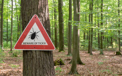 Springtime Is Tick Time. Learn How to Protect Yourself.