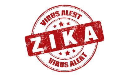 Is the Zika Virus Something You Should Worry About This Summer?